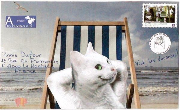 piggy own mailart th me le chat de la pub feu vert. Black Bedroom Furniture Sets. Home Design Ideas
