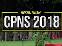 Informasi Lengkap Tentang Jadwal Tes CPNS 2018