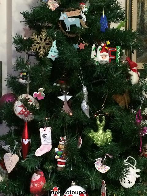 Choosing Cristmas Tree8