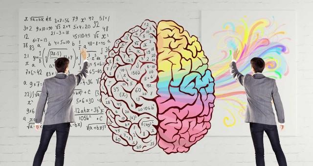 الدماغ الأيمن والأيسر