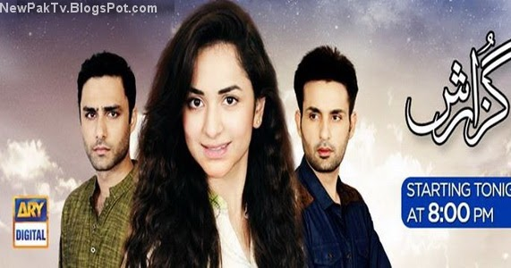 Watch online Ary Digital TV all serials  :: digpoteci cf