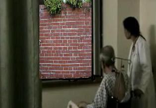 L'uomo vicino alla finestra