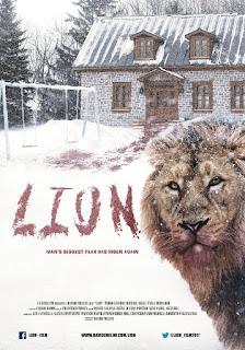 Davide Melini, Lion, cyoungmedia