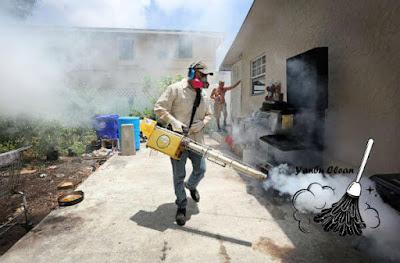 شركة رش مبيدات بينبع, رش مبيدات بينبع, افضل شركة رش مبيدات بينبع, شركة ينبع كلين لرش المبيدات بينبع