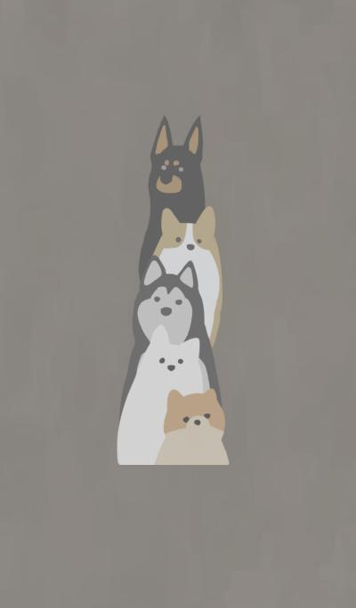 Order dog