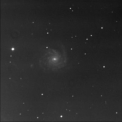 face-on galaxy NGC 1232 in luminance