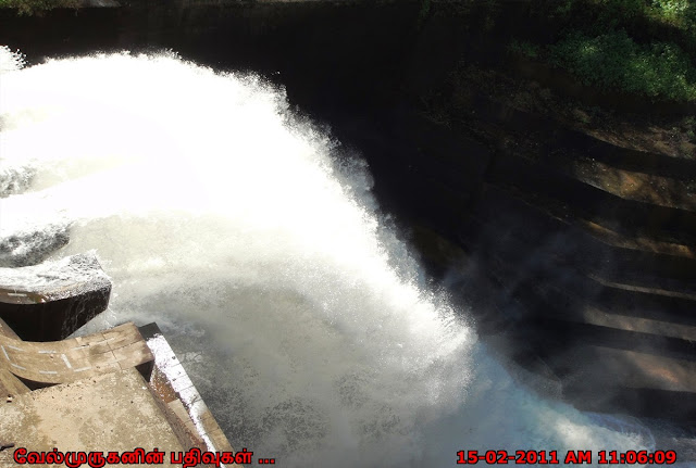 Mattupetty Dam Water Release