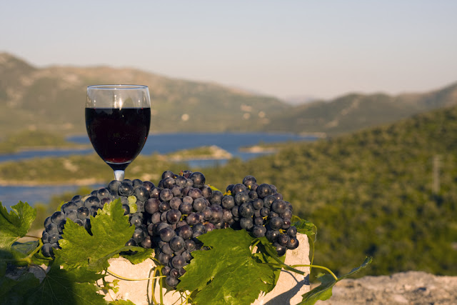 croatia-wine-road-trip
