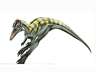 Dinosaurios: Velocisaurus