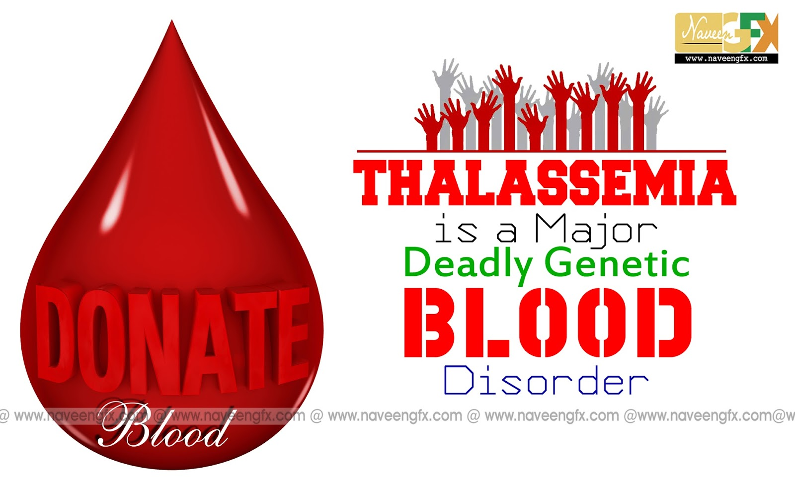 Slogans and posters of blood donation for thalassemia kids naveengfx donate blood for thalassemia hd posters and slogans altavistaventures Choice Image