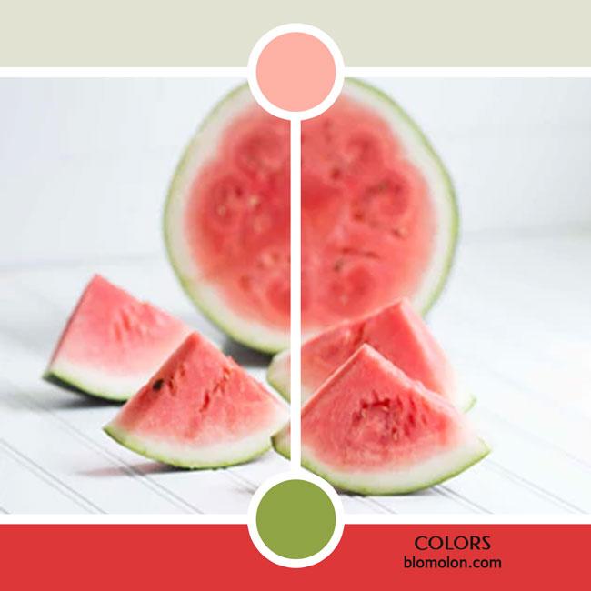 variedad_en_color_color_20