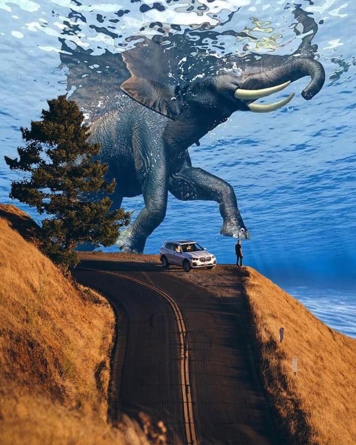 06-Elephant-taking-a-swim-Erkoc-Erhan-www-designstack-co