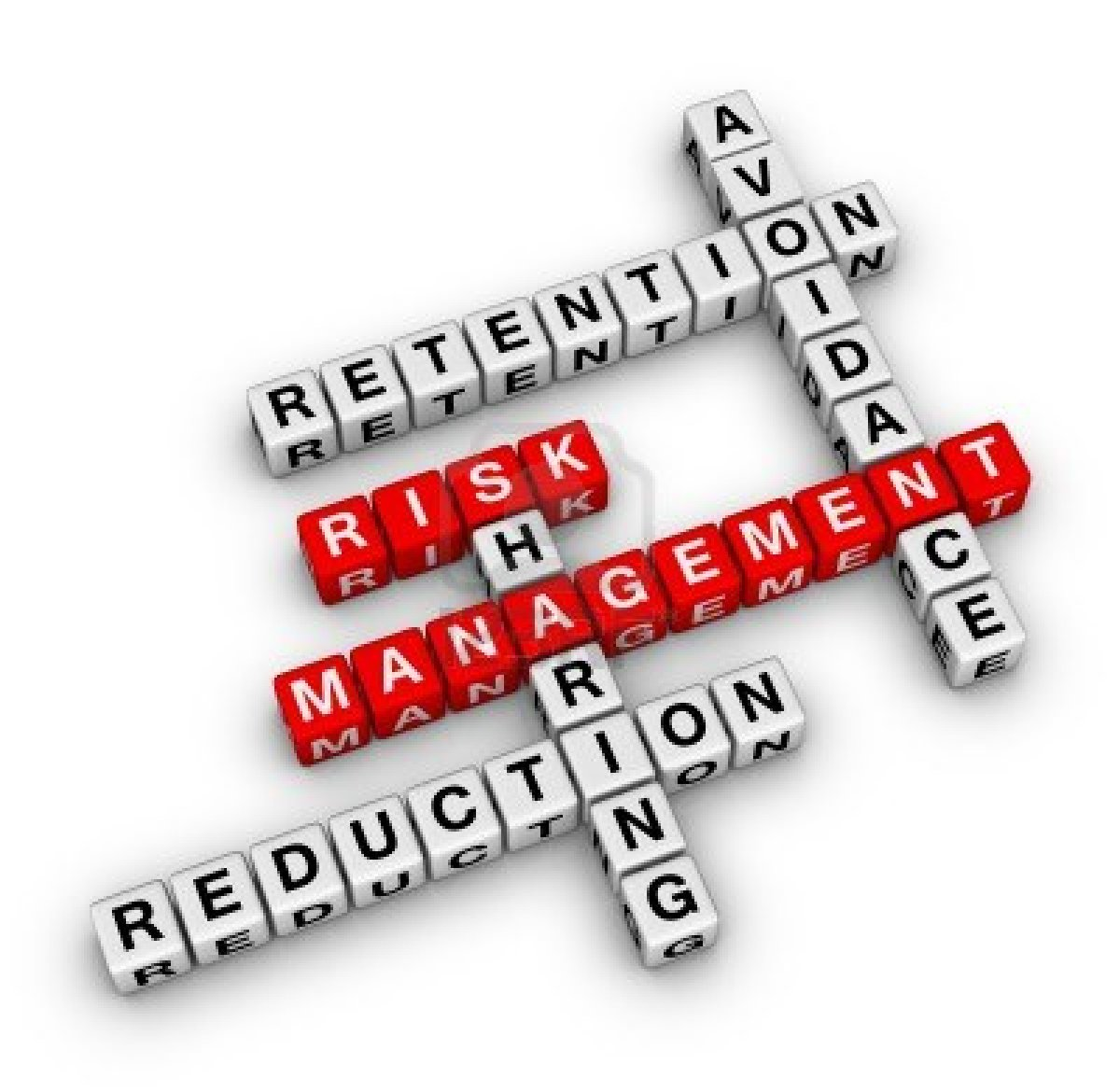 Contoh Makalah Manajemen Resiko