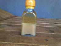 minyak bulus ori / original / asli tanpa campuran untuk payudara
