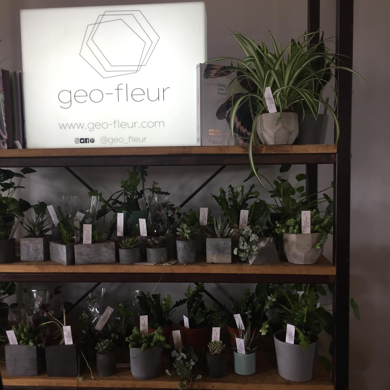 Geo Fleur at Northern Craft- a shelf full of plants