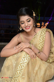 Actress Yamini Bhasker Pictures in Saree at anic Movie Audio Launch  0078.JPG