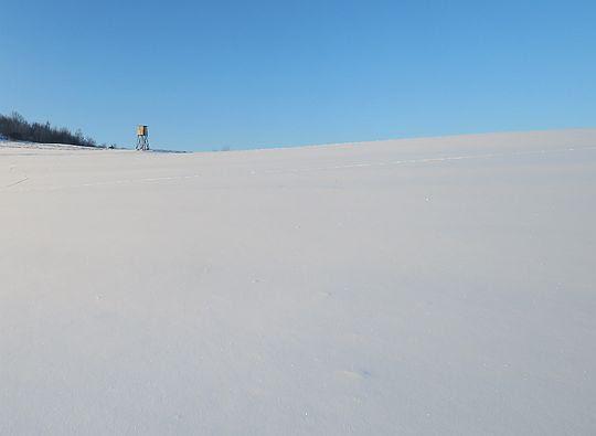Bezkresna śnieżna pustynia.