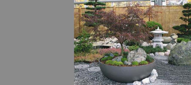 Large Saucer Planter Concrete Modern Saucer Planters