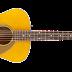 Cửa Hàng Bán Đàn Guitar Fender Concert Pro Bolt-On ở Tphcm