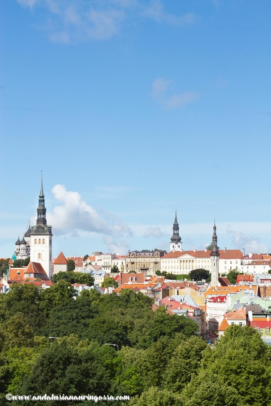 Taste of Helsinki 2017_Tallinna_Andalusian auringossa_ruokablogi_viiniblogi