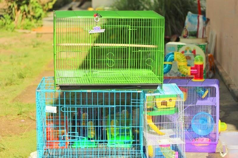 Jual Kandang Kucing / Kelinci / Anjing / Musang