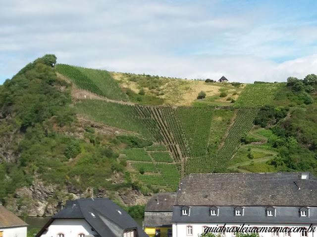 mosel estrada vinho alemanha colinas cultivadas - Estrada do vinho do rio Mosel
