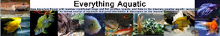 Best Aquarium Forum