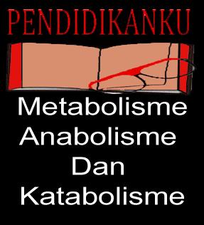 Pengertian Metabolisme, Katabolisme, Anabolisme