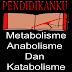 Pengertian Metabolisme, Anabolisme Dan Katabolisme