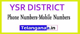 YSR DISTRICT OFFICERS Phone Numbers-Mobile Numbers Andhra Pradesh State