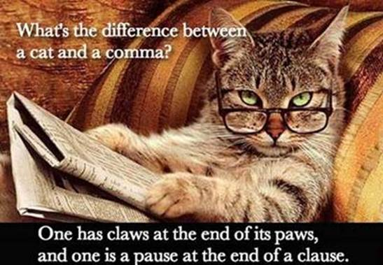 diff cat and a comma