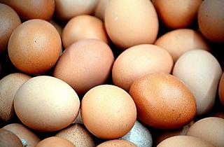 Manfaat Mengejutkan Telur