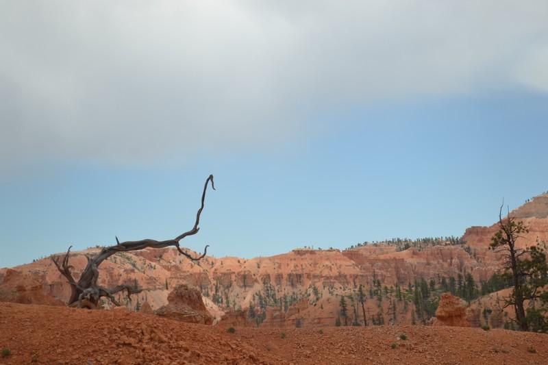 Ampithéâtre, Bryce, Canyon, Utah