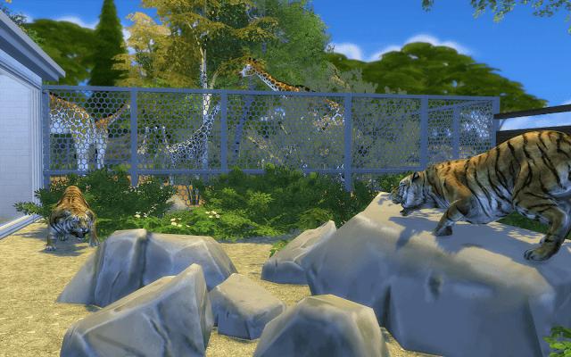 enclos tigre zoo sims 4