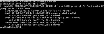 Lengkap Cara Mudah Setting IP Address, Konfigurasi Server di Debian 9 Dengan Cepat