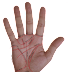 हाथ कौन सा देखे? (Which Hand To Read Palmistry)