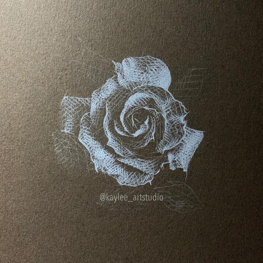 07-Rose-Kay-Lee-Drawings-www-designstack-co