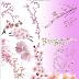 မွၵ်ႇၵွၼ် ႁၢင်ႈလီလီ တႃႇႁၢင်ႈၶိူင်ႈ Design (PSD File)