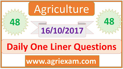 Sorghum Daily One Liner Questions-48