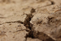 strada deserto ritrovamento gesù tempio gerusalemme ricerca dio vangelo commento