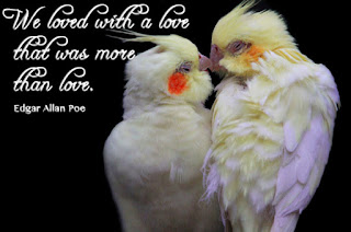 Find the best free stock images about love. Download all Love Photos and use them even for commercial projects.Romantic love pictures free photos download for commercial use. (1939 files) in jpg format. romantic love pictures, free photos, romantic love, romantic love ..