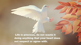Life is precious, do not waste it doing anything that your heart does not respect or agree with.