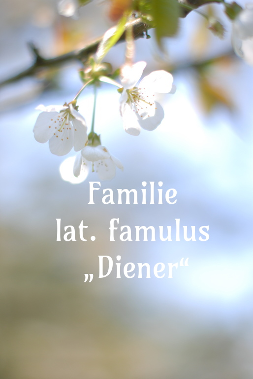 Familie heißt Dienen