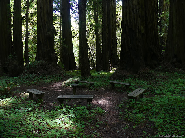 benches in a circle