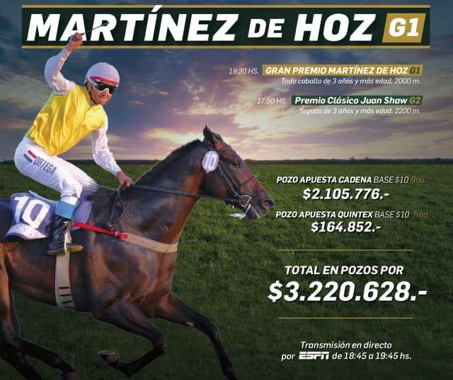 Afiche Gran Premio Martínez de Hoz 2017 San Isidro
