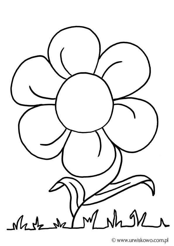 Pomeduk Wiosenne Kwiaty Krokus Kolorowanka Karta Pracy