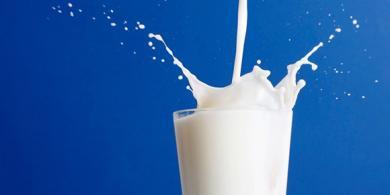 kebaikan meminum susu