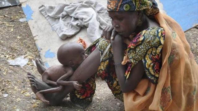 ¡Catástrofe humanitaria! 188 refugiados muertos por hambre en Nigeria