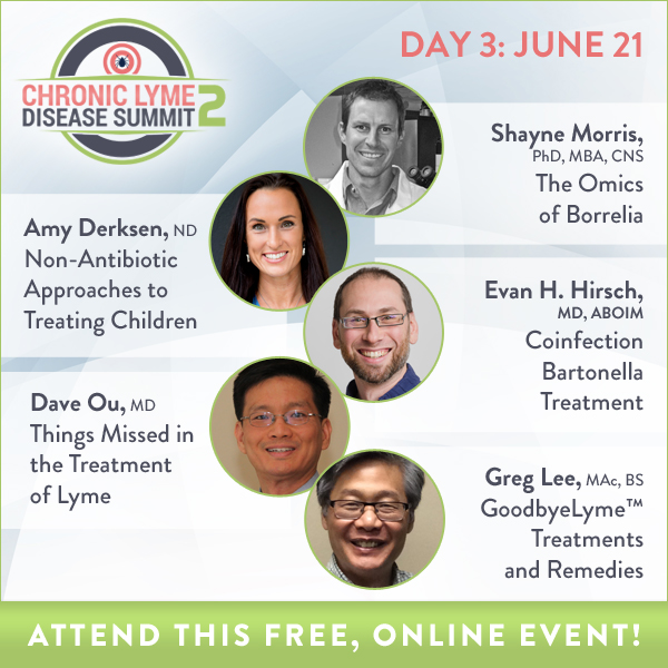 Kissy's: The Chronic Lyme Disease Summit 2 Day 3: Treat and