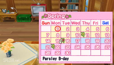 Kalender harvest goddnes Harvest Moon Hero Of Leaf Valley